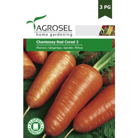 Semințe morcovi Chantenay Red Cored 2 - 8 g