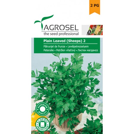 Semințe pătrunjel de frunze Plain Leaved (Sheeps) - 5 g
